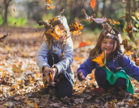 autumn-blur-bokeh-1582736